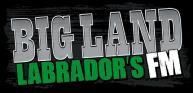 bigland-logo